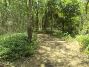 Plum Creek Nature Trail